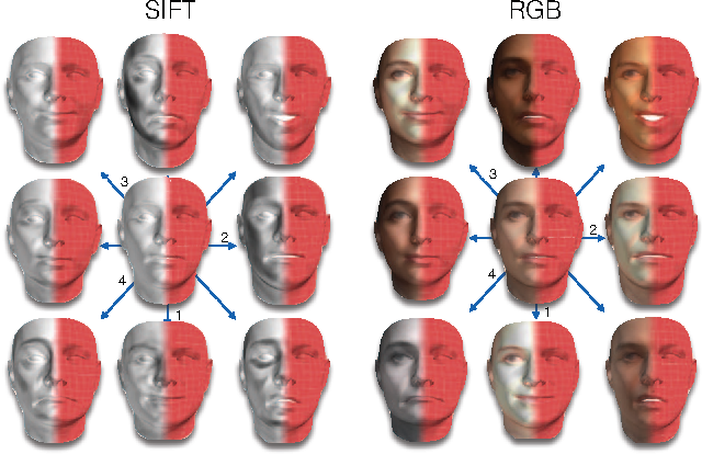 """Figure 3 for 3D Face Morphable Models """"In-the-Wild"""""""