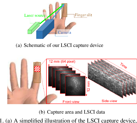 Figure 2 for On the Effectiveness of Laser Speckle Contrast Imaging and Deep Neural Networks for Detecting Known and Unknown Fingerprint Presentation Attacks