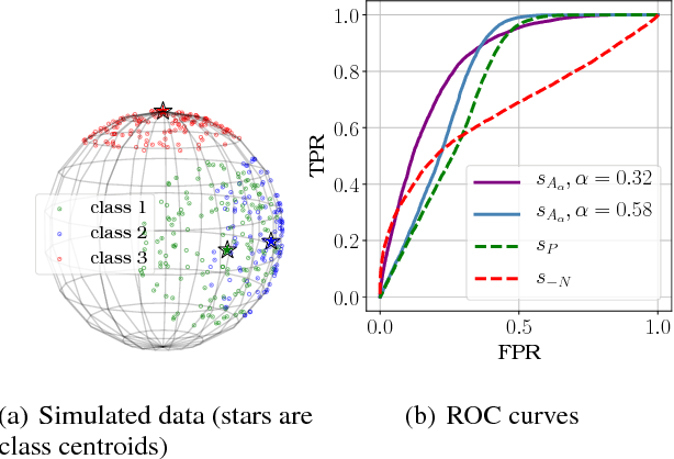 Figure 1 for A Probabilistic Theory of Supervised Similarity Learning for Pointwise ROC Curve Optimization