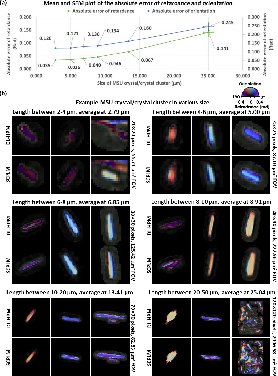 Figure 3 for Deep learning-based holographic polarization microscopy