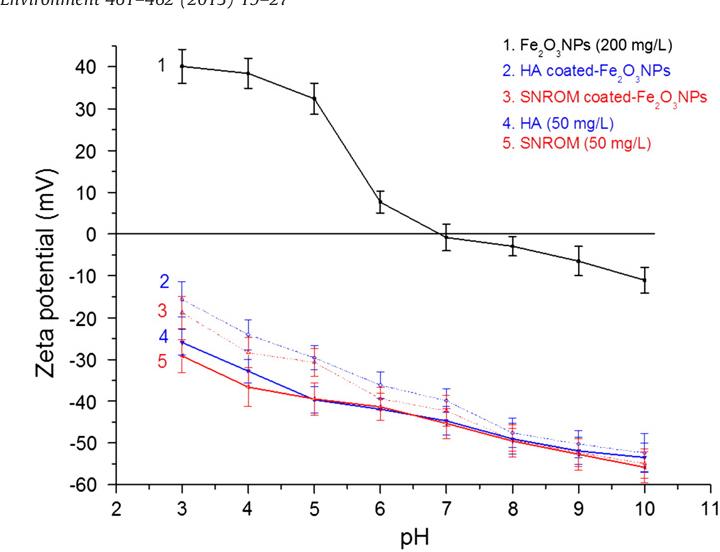 Fig. 1. Zeta potential profiles of Fe2O3NPs, DOM-coated Fe2O3NPs, HA and SRNOM.