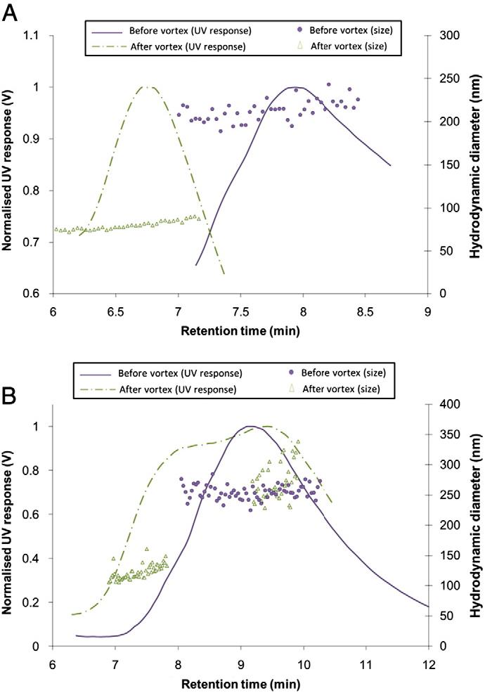 Fig. 7. Effect of vortex on the disaggregation of (A) HA-coated Fe2O3NPs and (B) SRNOM-coated Fe2O3NPs.