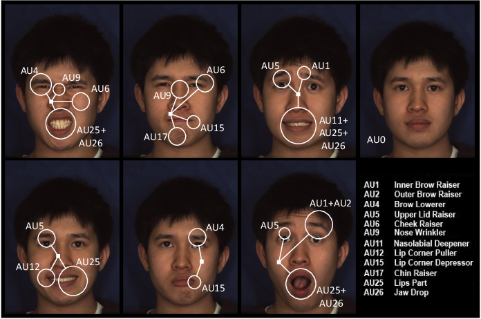 Figure 1 for Graph-based Facial Affect Analysis: A Review of Methods, Applications and Challenges
