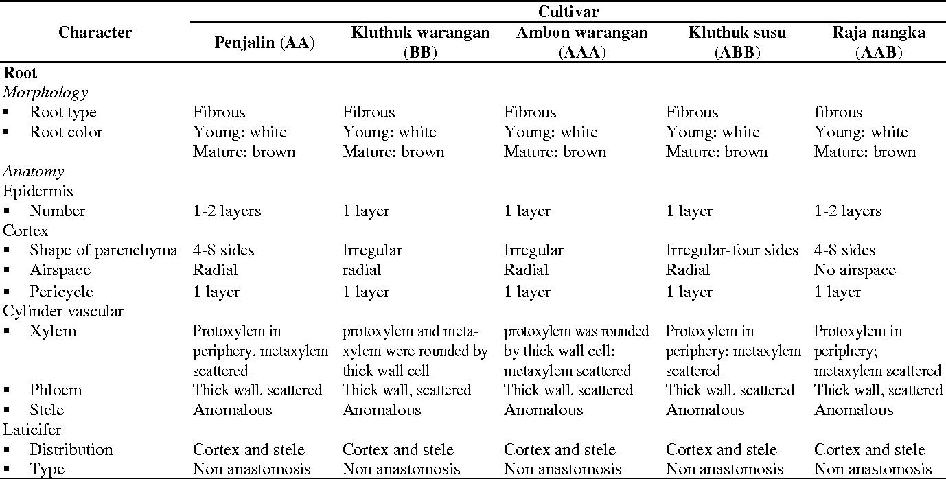 Anatomy And Morphology Character Of Five Indonesian Banana Cultivars