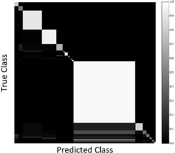 Figure 3 for Classification of Medical Images and Illustrations in the Biomedical Literature Using Synergic Deep Learning