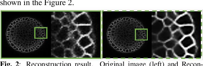 Figure 2 for Deep Quantized Representation for Enhanced Reconstruction