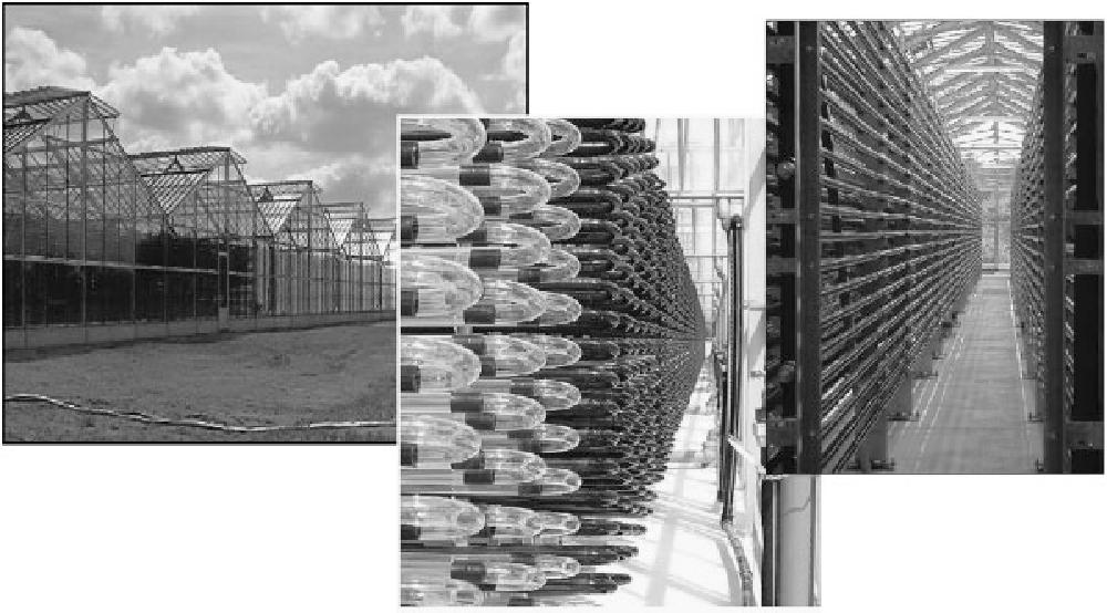 Design Principles Of Photo Bioreactors For Cultivation Of Microalgae Semantic Scholar
