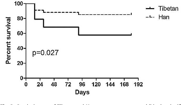 figure 2 from blood blister like aneurysms in tibetans a retrospectivefig 2 survival curve of tibetan and han group, two groups exhibited a