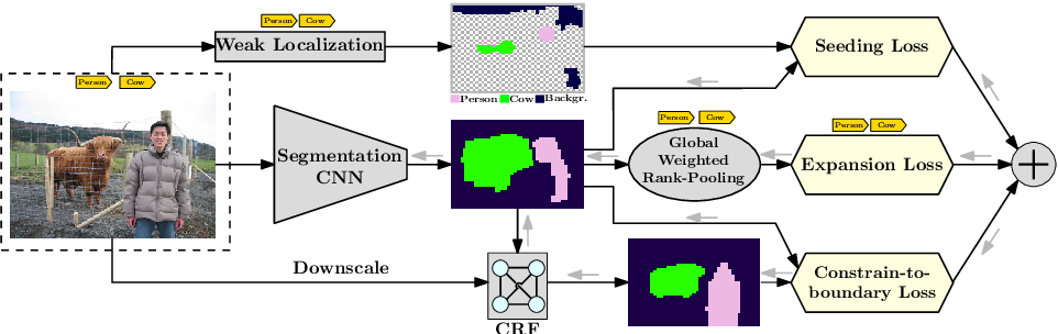 Figure 1 for Seed, Expand and Constrain: Three Principles for Weakly-Supervised Image Segmentation