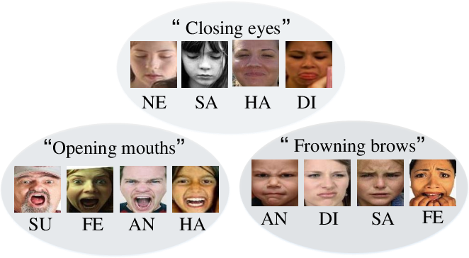 Figure 1 for Feature Decomposition and Reconstruction Learning for Effective Facial Expression Recognition