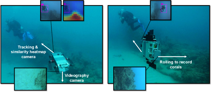 Figure 3 for One-Shot Informed Robotic Visual Search in the Wild