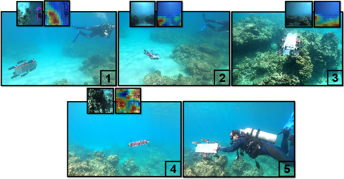 Figure 4 for One-Shot Informed Robotic Visual Search in the Wild