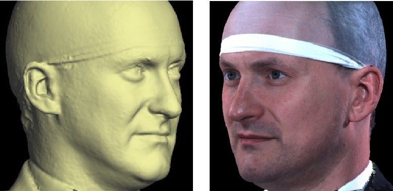 Figure 1 for Automatic 3D modelling of craniofacial form