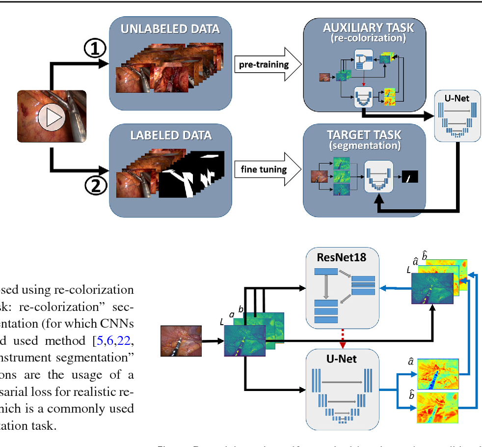 Figure 3 for Exploiting the potential of unlabeled endoscopic video data with self-supervised learning
