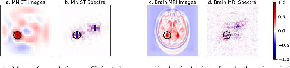 Figure 1 for Joint Frequency- and Image-Space Learning for Fourier Imaging