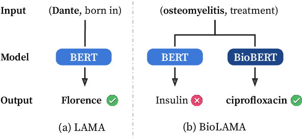Figure 1 for Can Language Models be Biomedical Knowledge Bases?