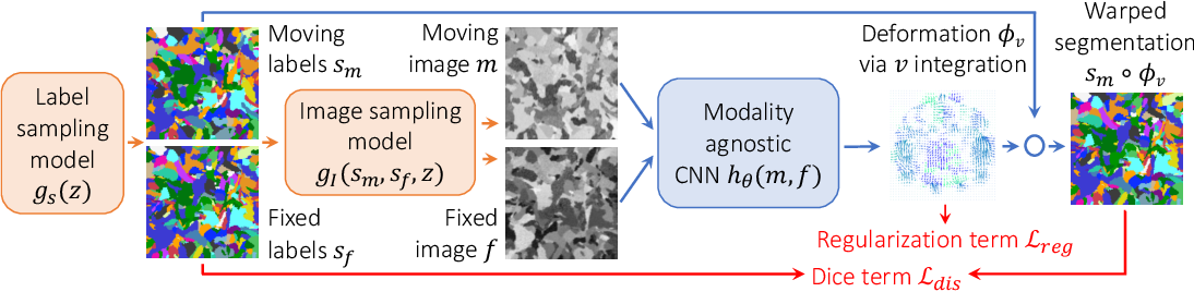 Figure 1 for Learning Multi-Modal Image Registration without Real Data
