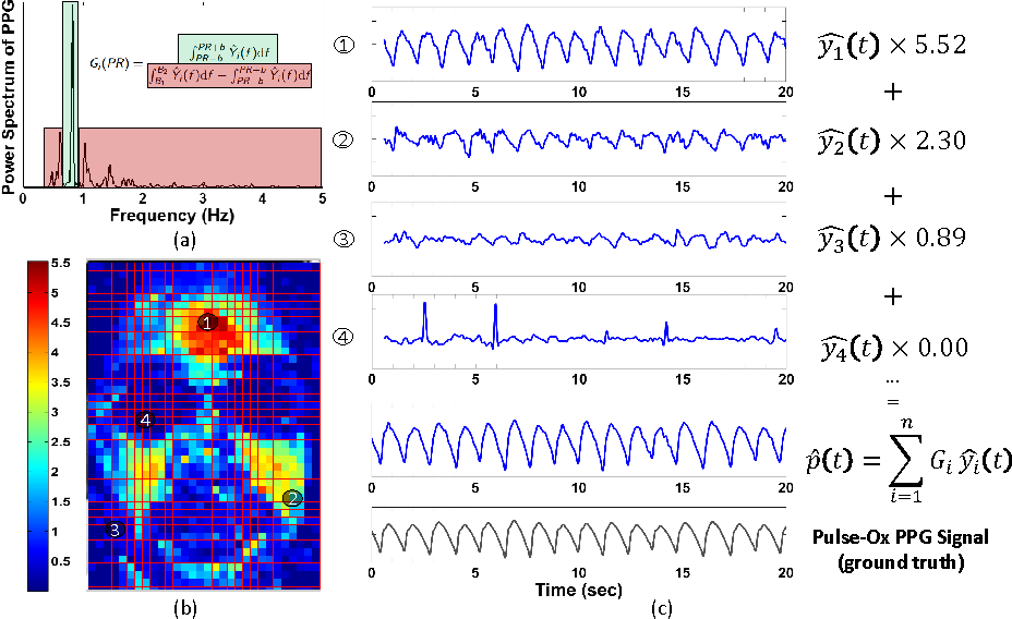 Figure 3 for DistancePPG: Robust non-contact vital signs monitoring using a camera