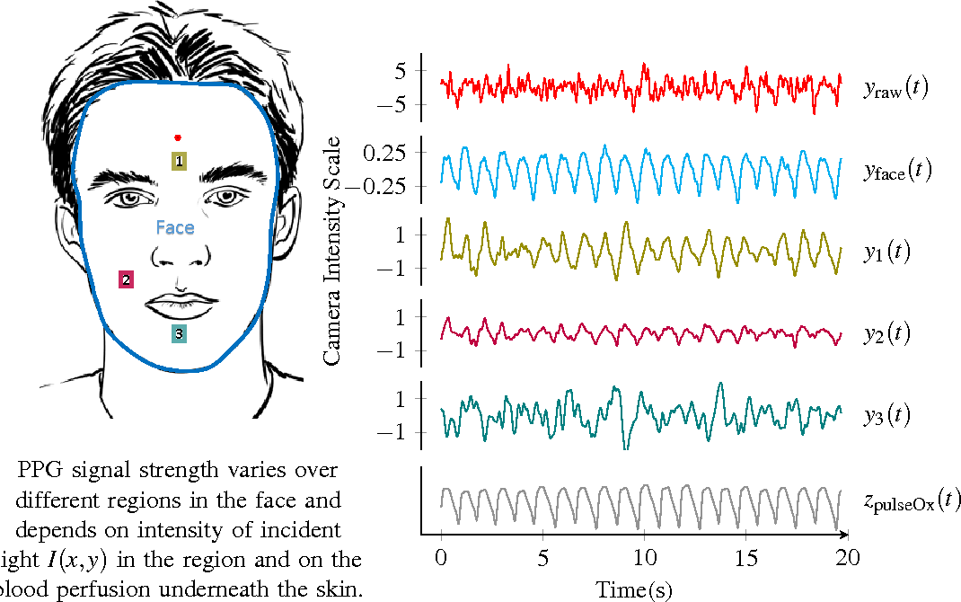 Figure 1 for DistancePPG: Robust non-contact vital signs monitoring using a camera