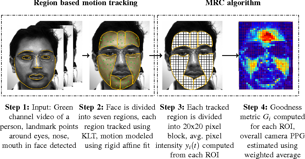 Figure 2 for DistancePPG: Robust non-contact vital signs monitoring using a camera