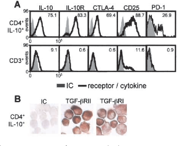 Figure 5. Expression of suppressor molecules on IL-10–secreting T cells. (A) Immediately after purification, antigen-specific IL-10–secreting T cells of healthy individuals were analyzed for intracytoplasmic IL-10, surface IL-10R, CTLA-4, CD25, and PD-1 by flow cytometry. Data are compared with CD3 T cells of the same donor stimulated with the same antigen. (B) TGF- RI and RII expression by immunohistology. (A and B) Same results were obtained in three independent experiments.