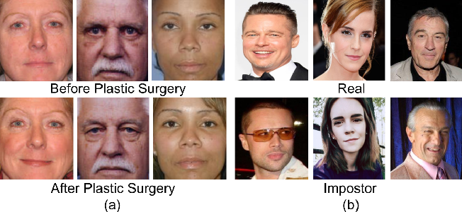 Figure 1 for On Matching Faces with Alterations due to Plastic Surgery and Disguise