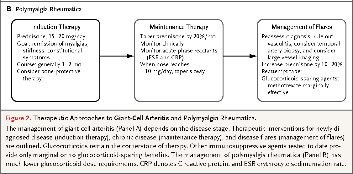 Figure 2 From Clinical Practice Giant Cell Arteritis And