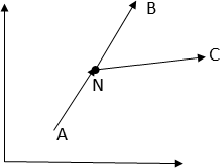 Fig. 1. Bifurcated paths from valid initial conditions.