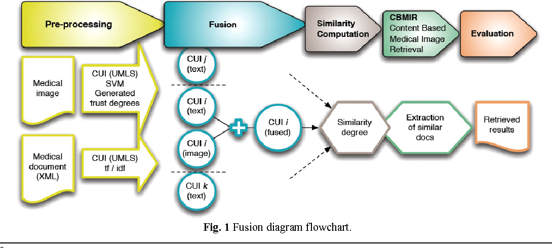 Figure 1 for Prospective Study for Semantic Inter-Media Fusion in Content-Based Medical Image Retrieval