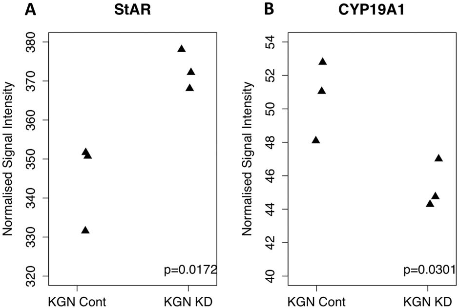 Figure 4. Signal intensity plots from knockdown data for StAR (A) and CYP19A (B). StAR, usually repressed by FOXL2 shows a significant increase (p = 0.01) in expression following the knockdown of mutant FOXL2. CYP19A, usually activated by FOXL2 shows a significant decrease (p = 0.03) in expression following the knockdown of mutant FOXL2. Signal intensities are plotted as RMA normalised data for each genechip. This data leads us to believe that mutant FOXL2 is able to regulate the expression of these FOXL2 targets. doi:10.1371/journal.pone.0046270.g004