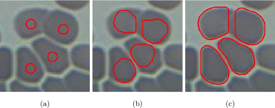 Figure 4 for Using the Split Bregman Algorithm to Solve the Self-Repelling Snake Model