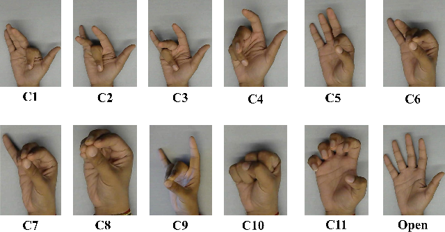 Figure 4 for Prediction of Metacarpophalangeal joint angles and Classification of Hand configurations based on Ultrasound Imaging of the Forearm