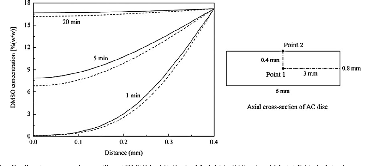 FIG. 3. Predicted concentration profiles of DMSO in AC disc by Model-I (solid lines) and Model-II (dashed lines), respectively, as a function of exposure time. The abscissa represents the axial line of the AC disc with Point 1 at 0 mm and Point 2 at the furthest point to the right. Exposure temperature: 1 C, exposure concentration: 19%(w/w).