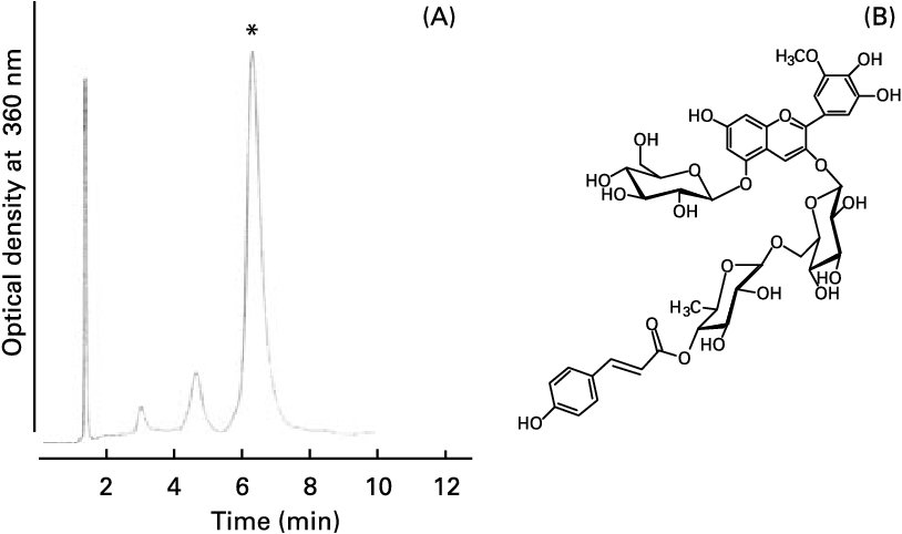 Fig. 1. HPLC chromatogram (A) of purified anthocyanin from pigmented fractions of Kitamurasaski and Hokkai no. 92 potato flakes, and the structure (B) of the main anthocyanin from both Kitamurasaski and Hokkai no. 92 potato flakes. The column was conditioned with water–methanol–trifluroacetic acid (70:30:0·1, by vol.) for 30 min at 408C with a flow rate of 1 ml/min monitoring at 360 nm. *The major peak was identified as petunidin-3-O-[6-O-(4-O-E-p-coumaroyl-O-a-rhamnopyranosyl)-b-glucopyranoside]-5-O-b-glucopyranoside.