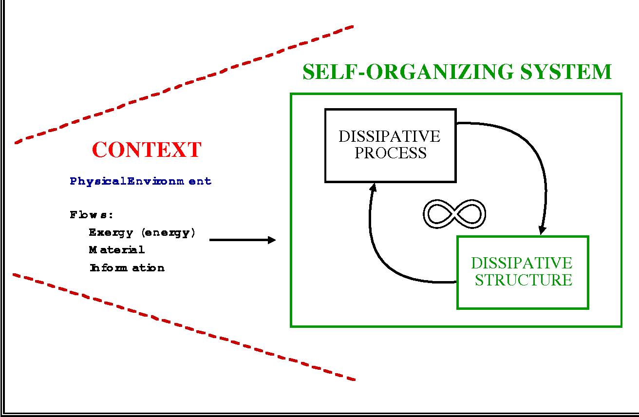 Figure 3 from ecosystems as self organizing holarchic open systems figure 3 a conceptual model for self organizing systems as dissipative structures self ccuart Images