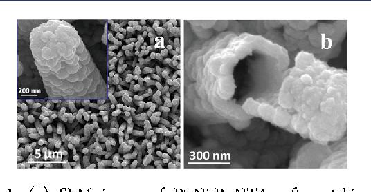 Figure 1. (a) SEM image of Pt-Ni-P NTAs after etching ZnO nanorods and (b) typical SEM image of a broken Pt-Ni-P nanotube.