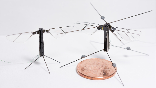 Figure 1 for Bee$^+$: A 95-mg Four-Winged Insect-Scale Flying Robot Driven by Twinned Unimorph Actuators