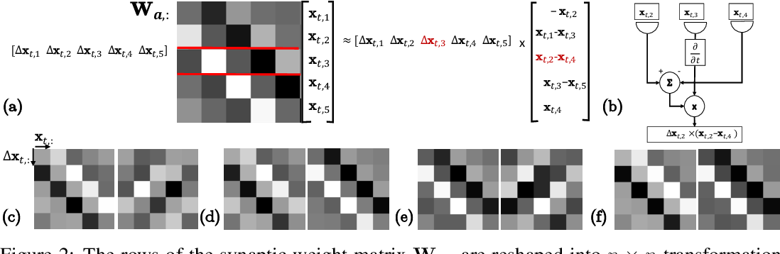 Figure 2 for A Similarity-preserving Neural Network Trained on Transformed Images Recapitulates Salient Features of the Fly Motion Detection Circuit