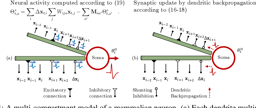 Figure 3 for A Similarity-preserving Neural Network Trained on Transformed Images Recapitulates Salient Features of the Fly Motion Detection Circuit