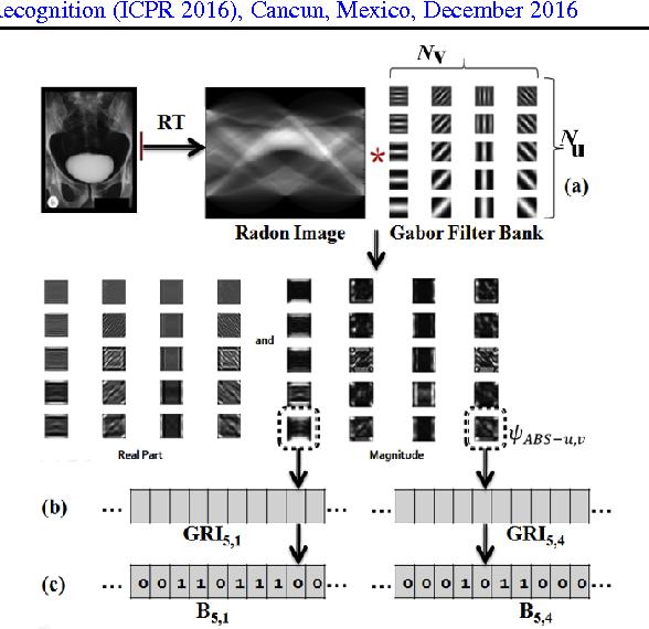 Figure 1 for Radon-Gabor Barcodes for Medical Image Retrieval