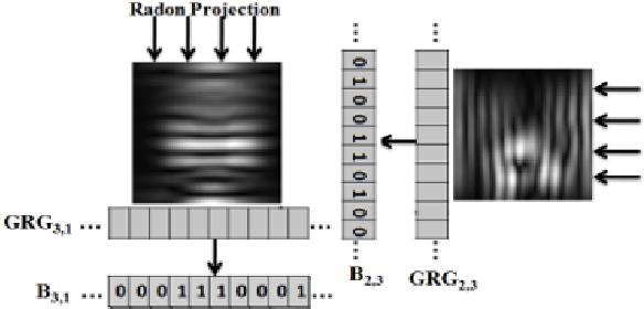 Figure 4 for Radon-Gabor Barcodes for Medical Image Retrieval