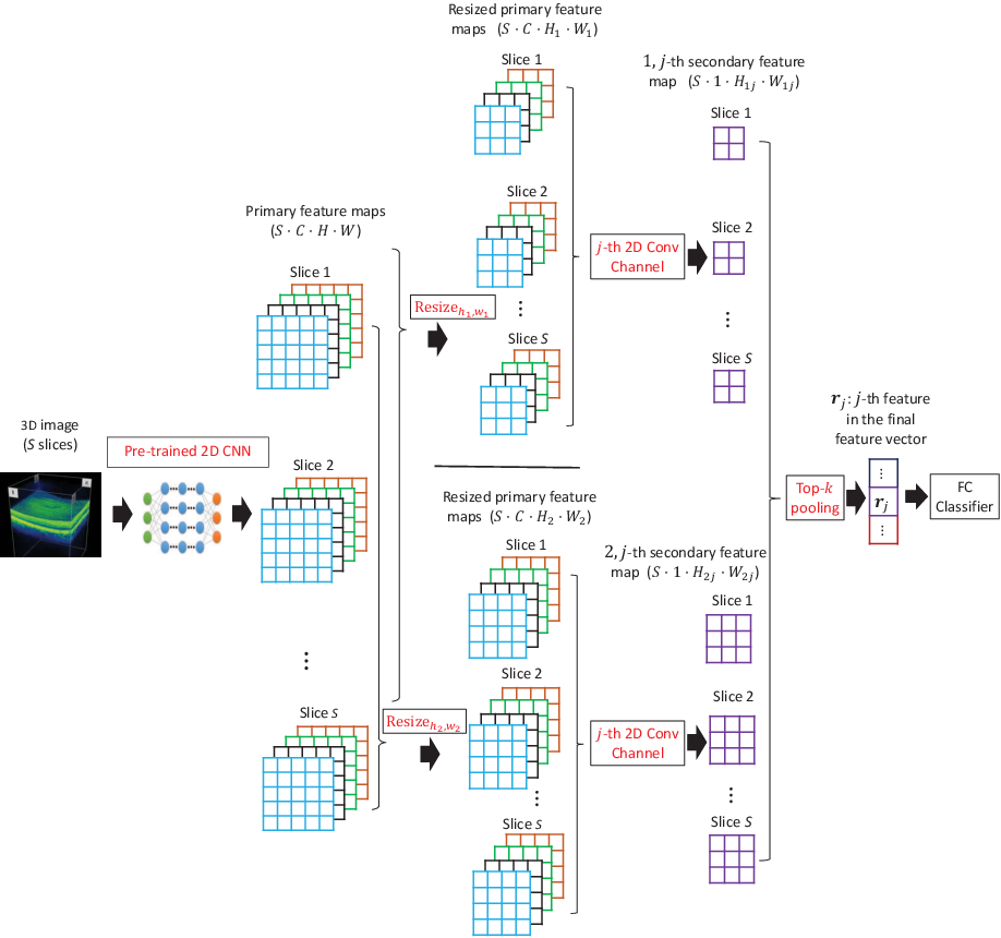 Figure 1 for Multi-Instance Multi-Scale CNN for Medical Image Classification