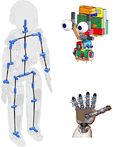 Figure 2 for iCub