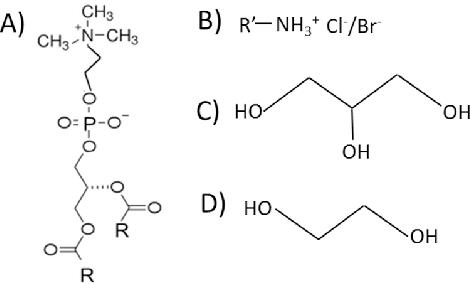 Effect Of Deep Eutectic Solvent Nanostructure On Phospholipid