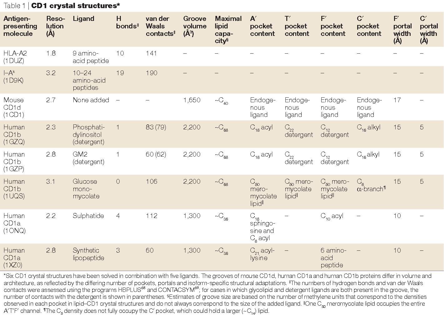 Anatomy of CD1–lipid antigen complexes - Semantic Scholar
