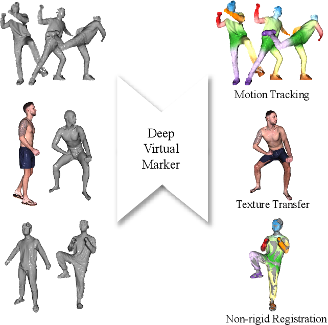 Figure 1 for Deep Virtual Markers for Articulated 3D Shapes