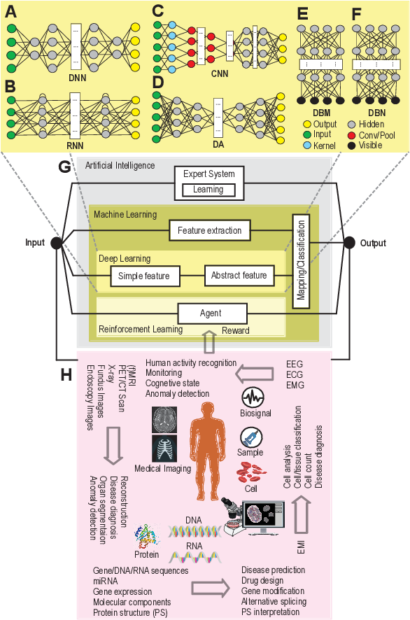 Figure 1 for Applications of Deep Learning and Reinforcement Learning to Biological Data