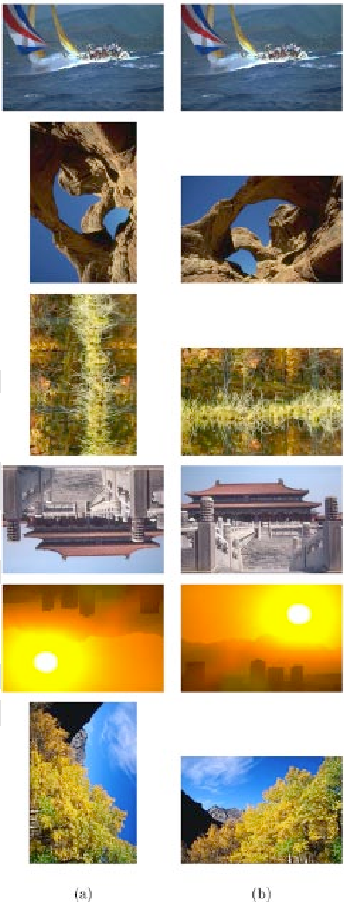 Fig. 7. Subset of images in the database whose orientations were correctly detected. (a) Input images and (b) detected orientations.
