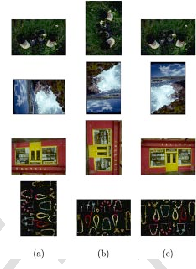 Fig. 8. Subset of images in the database that were misclassified. (a) Input images, (b) detected orientations, and (c) true orientations.