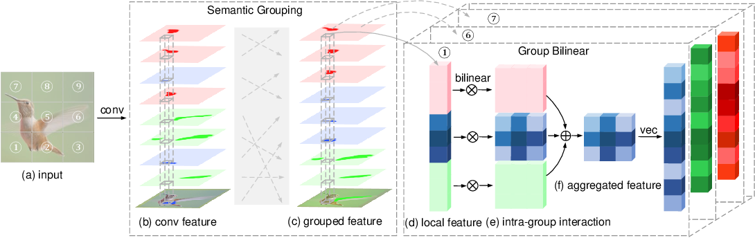 Figure 1 for Learning Deep Bilinear Transformation for Fine-grained Image Representation